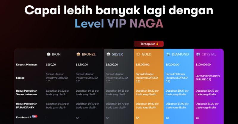 Naga Accounts ID